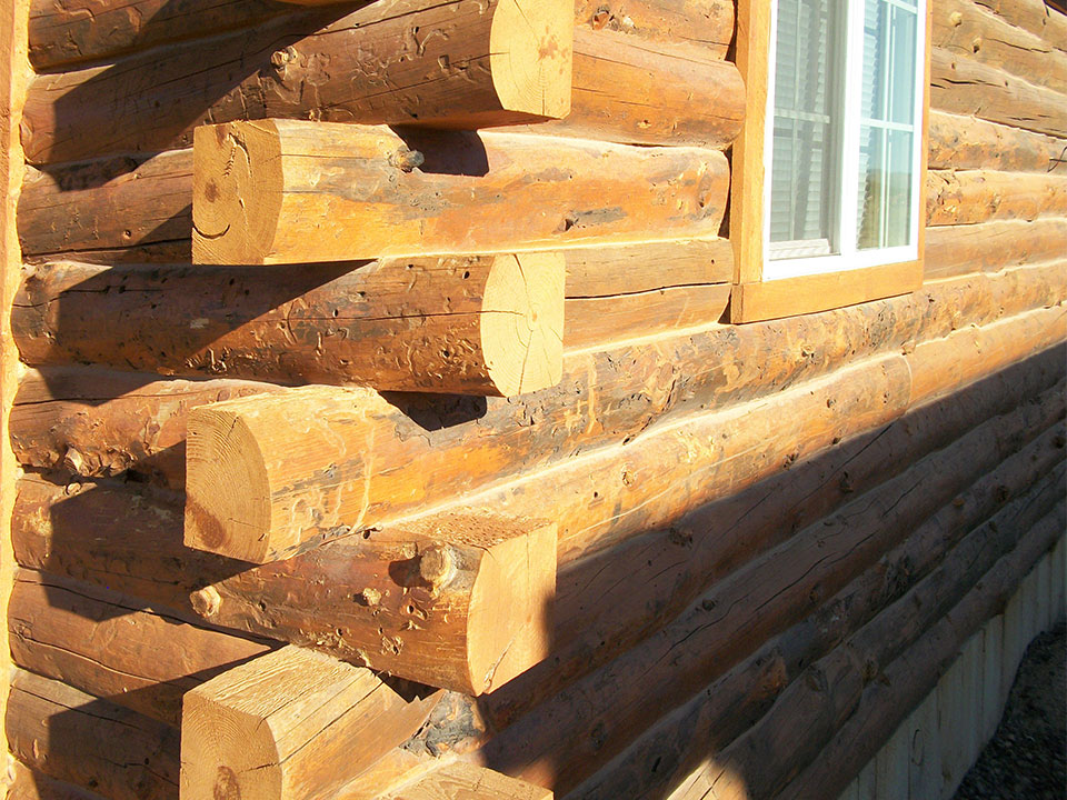 Thousand lake lumber and log homes lyman utah How to build a butt and pass log cabin